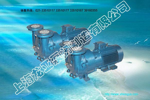 2BVA系列水环真空泵