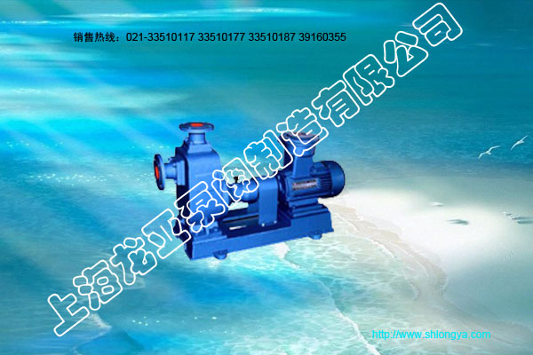 CYZ油泵