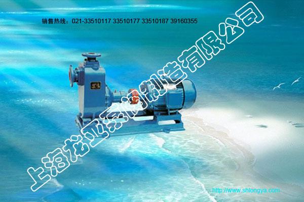 ZW自吸泵